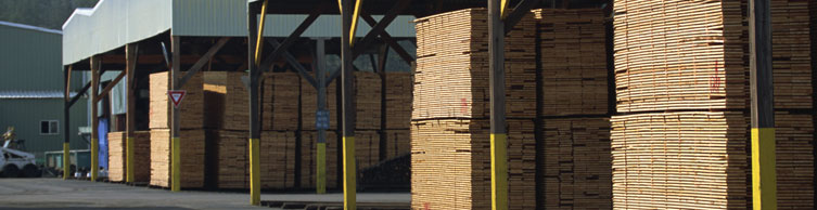 Cook County Lumber Inventory management